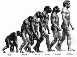 "達爾文在1859寫了 ""物種原始"" The Orign of Species ~ Darwin"